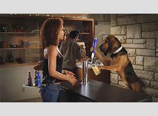 Top 10 Funniest Budweiser Super Bowl Commercials of All ... Jeyachandran Ad 2019
