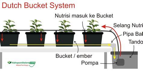 membuat hidroponik dutch bucket cara kerja hidroponik sistem dutch bucket hidrafarm