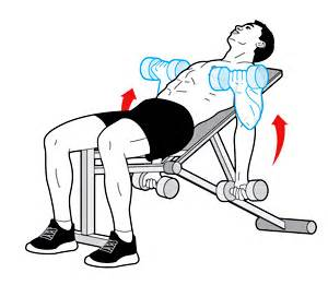 Dumbbells Without Bench Fitness Tips Idea March 2011
