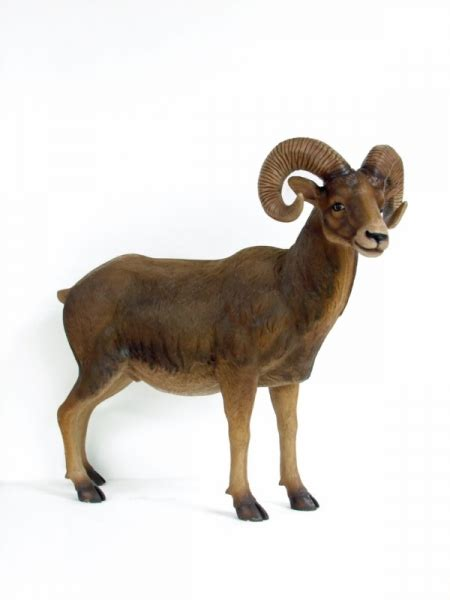 the ram animal mountain ram animal prop animal prop hire