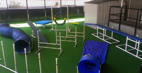 how to agility diy agility equipment do it your self