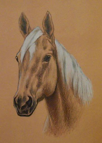 quarter horse tattoo pin by wendy mitchell kasprowicz on tattoos