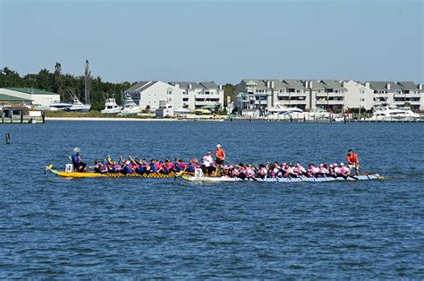 dragon boat festival 2018 lineup 3rd annual dragon boat festival capemay blog