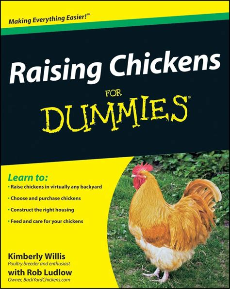 and chicken books raising chickens for dummies book all you need to