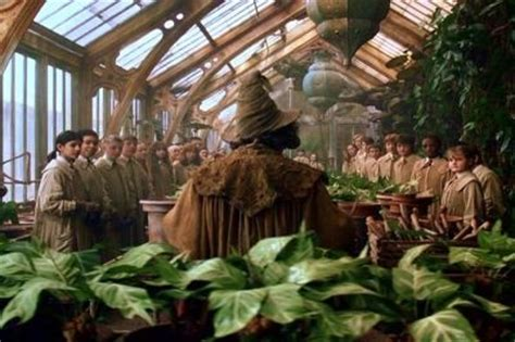 herbology class harry potter and the chamber of secrets pinterest