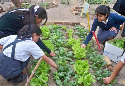 imagenes de jardines escolares post escolares trabajan por una ciudad m 225 s verde
