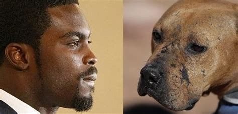 Attention Brits You To Sign This Petition Today by Petition 183 Michael Vick No Animals Now Or Sign The