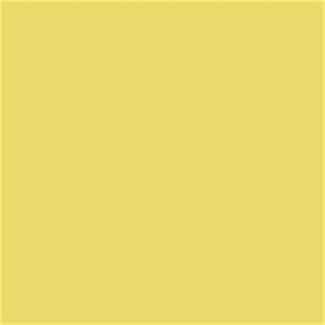 sherwin williams paint store plano tx paint color sw6913 funky yellow from sherwin williams