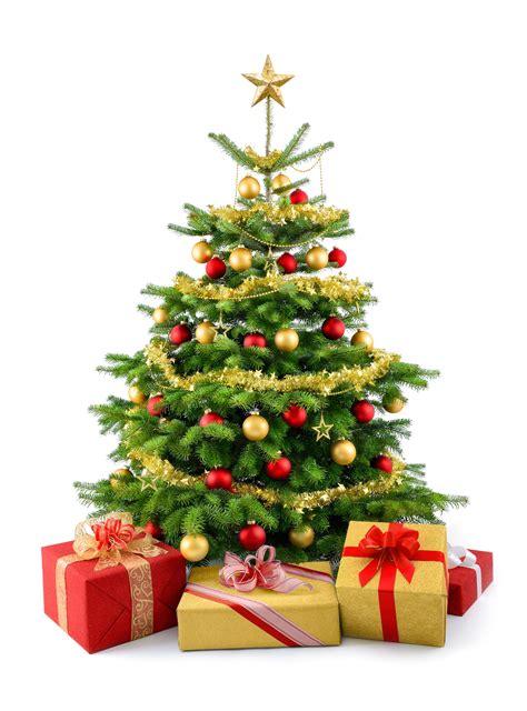 weihnachten silvester 2017 wachtelhof