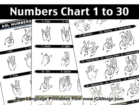 asl numbers 1 100 printable 5 best images of sign language numbers 1 100 chart