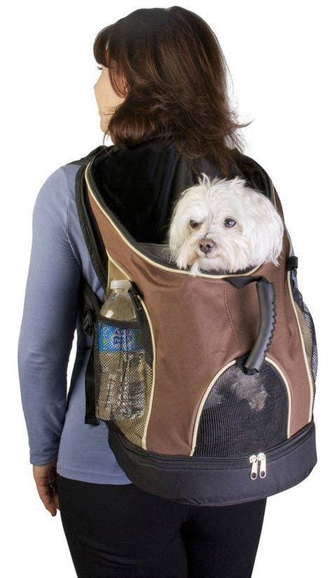 puppy carrier backpack best 20 backpack ideas on travel pet travel and pet infographic