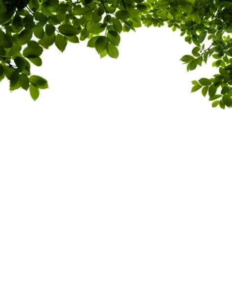 tree pattern png png viny leaves by moonglowlilly on deviantart stock