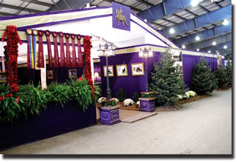 custom stall drapes show horse apparel accessories tack trunks and stall