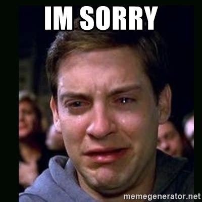 Im Sorry Meme - im sorry crying peter parker meme generator