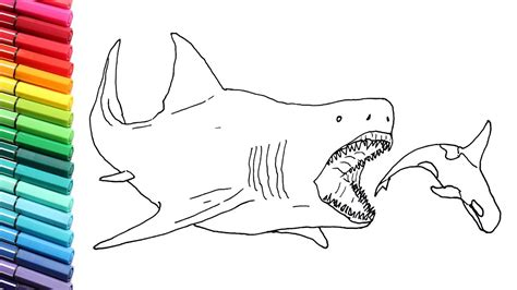 shark pictures to color drawing and coloring the megalodon megalodon shark color