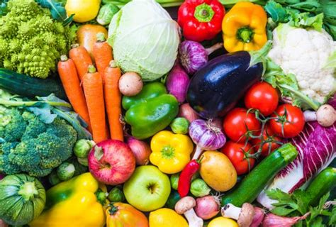 Vegetable L by The Meaning And Symbolism Of The Word 171 Vegetable 187