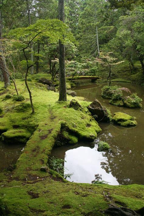 saiho ji moss garden kyoto japan pinterest gardens buddhists and zen