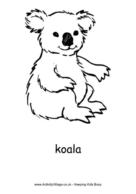 realistic koala coloring pages 9 best images about resource colouring pages australia