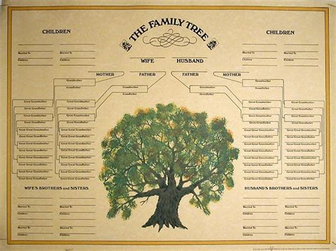 family history family history bestquest