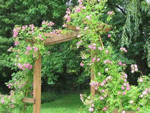 backyard flower garden ideas marceladick com