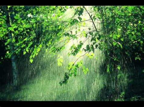 imagenes relajantes con sonido sonido de la lluvia durante una hora con truenos sound