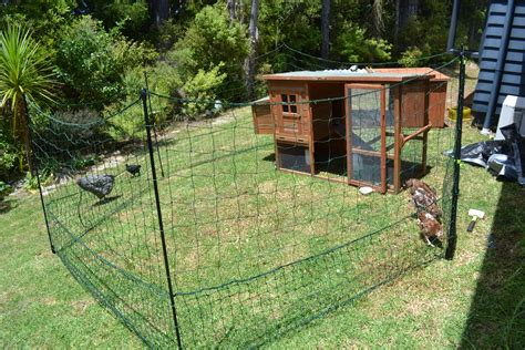 backyard chooks wood work chook house plans nz free pdf plans