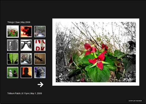 Free Photo Galleries For Photographers