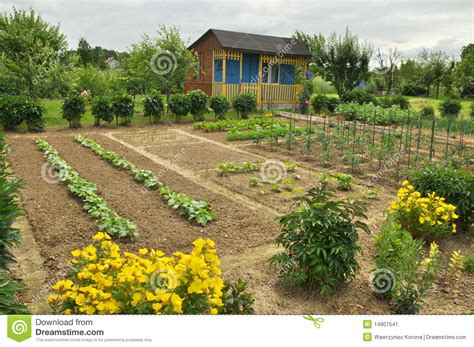 Cottage Vegetable Garden by Cottage And Vegetable Garden Stock Image Image 14907541