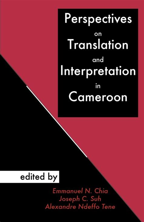research on translator and interpreter a collective volume of bibliometric reviews and empirical studies on learners new frontiers in translation studies books books collective perspectives on translation and