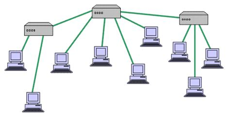 tree topology diagram swanand network types topology in network design osi
