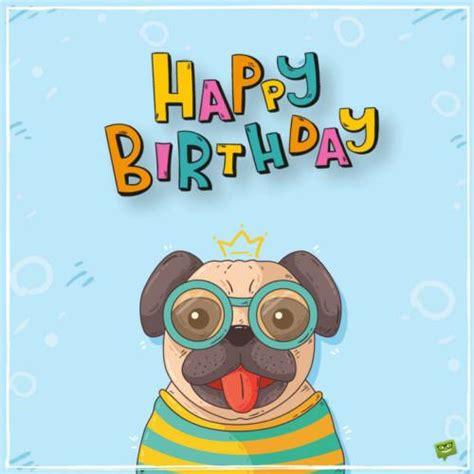 pug birthday wishes birthday wishes