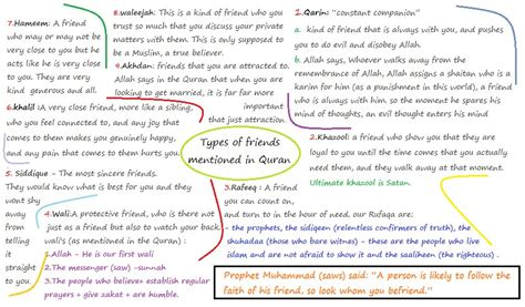 another word for comfortable types of friends mentioned in the qur an a random extremist