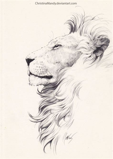 lion side tattoo 11 best tattoos images on designs
