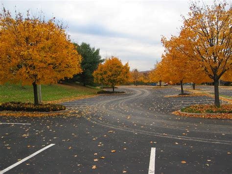 empty autumn parking lot  michael jastremski fall
