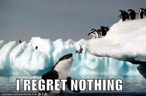 Nothing Meme - no ragrets
