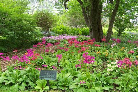 botanical garden boise