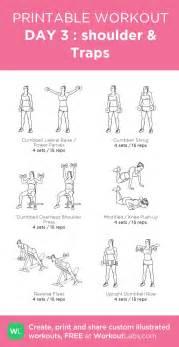 best 25 traps workout ideas on shoulder