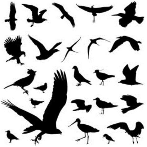 small bird tattoos for men best 25 simple bird ideas on delicate