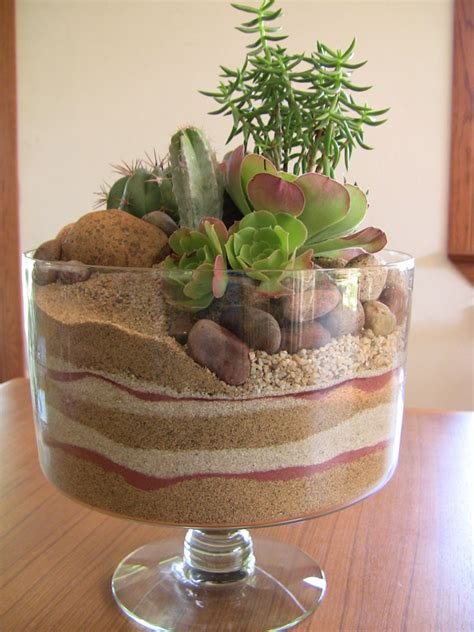 Succulent Dish Garden Ideas Succulent Trifle Dish Garden Mini Desert Succulent Container Arrangements Pinterest