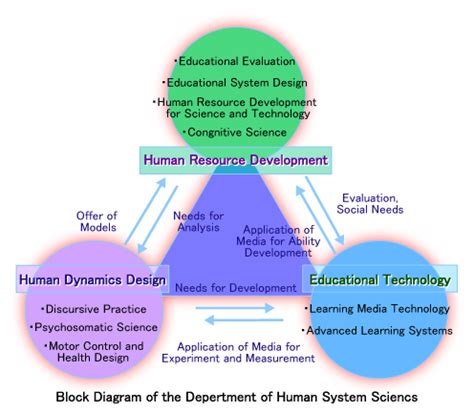 department of human system science