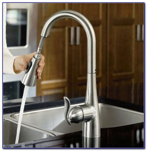 Types Of Faucets Kitchen by Types Of Kitchen Faucets Faucets Home Design Ideas