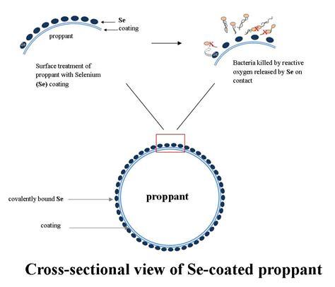 cross sectional view gallionella poseidon sciences