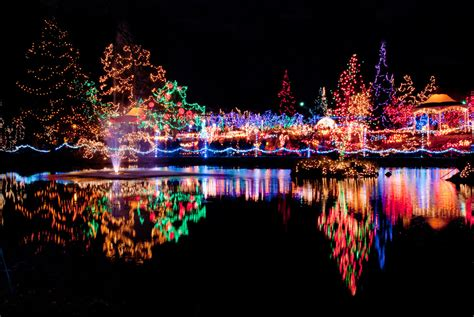 The Festival Of Lights At The Cincinnati Zoo Mercy Etcetera Cincinnati Zoo Festival Of Lights Tickets
