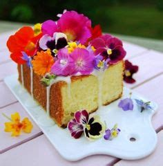 1000 images about edible flowers recipe ideas on 1000 images about edible flowers on pinterest edible
