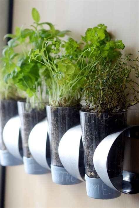 Wall Mounted Herb Planter by 10 Diy Indoor Herb Garden Ideas And Planters Honey Lime