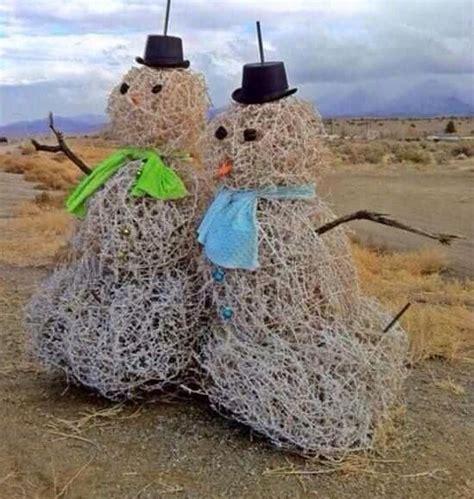 Tumbleweed Home 1000 images about arizona winter wonderland on pinterest