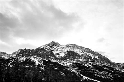 Back To Mountain by The Gallery For Gt Mountains Black And White