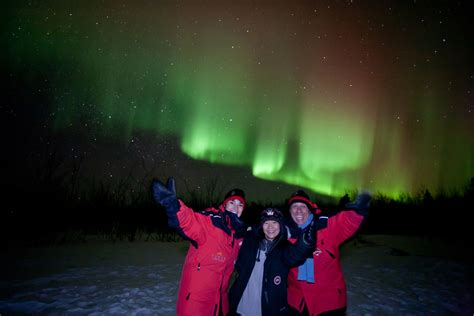 borealis northern lights tours yukon borealis yukon basic borealis package