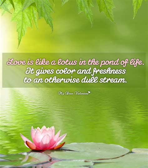 pond quotes lotus in the pond inspirational picture quote