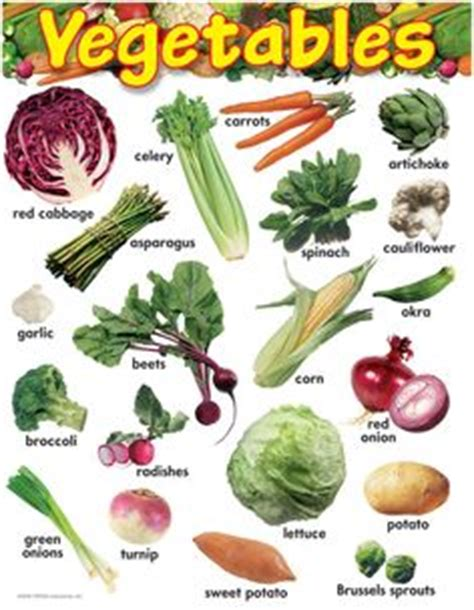 root vegetable identification 1000 images about csa id charts on root